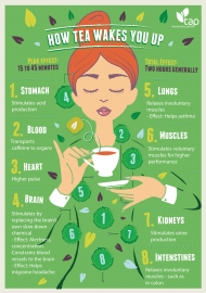 How Tea Wakes You Up - infographic